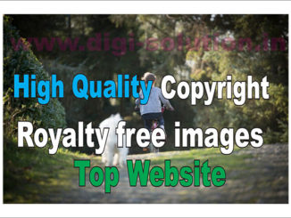 copyright & royalty free image